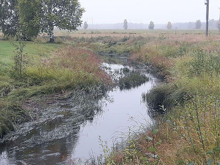 Tyrnävänjokeen laskevalla Leppiojalla toteutettiin tulvatasanteellinen peruskuivatushanke vuonna 2012. Kuva: Henri Vaarala